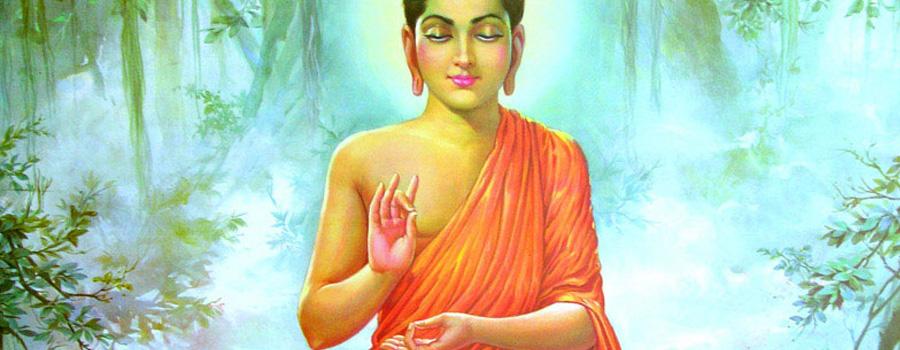 Meditacion-Secciones